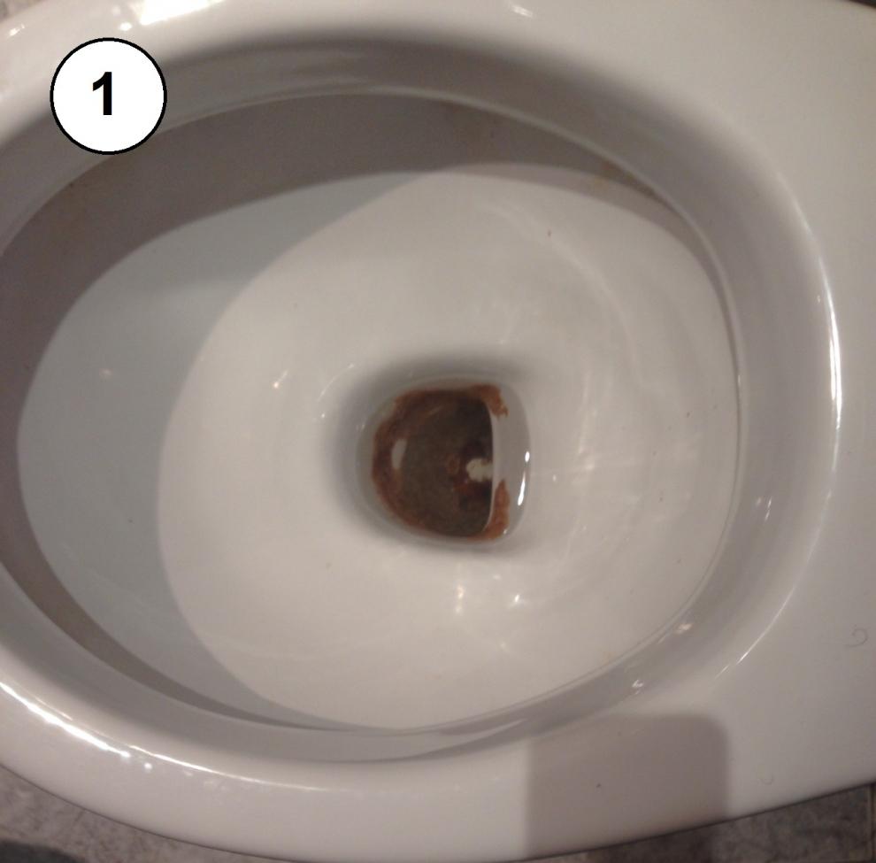 10 05 16 Limpiar Un Inodoro Con Oxa Wc Limp Oxa Cygyc